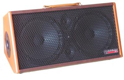 Audiodesign Gipsy 2X8 Amplificatore A Batteria Chitarra Acustica