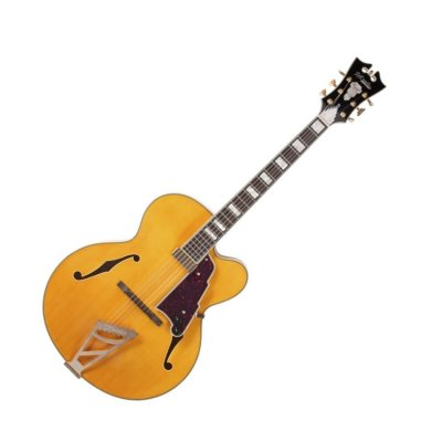D'ANGELICO EXL1 NATURAL HOLLOWBODY