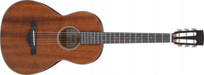 Ibanez Avn9-opn - thermo aged - open pore natural