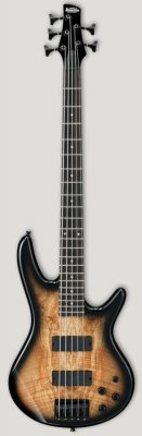 IBANEZ GSR205SM-NTG 5C NATURAL GREY BURST