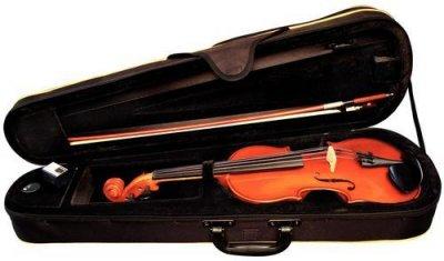 Alysee Vn30 Violino 4/4 C/Astuccio