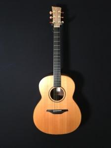 Mcilroy A30 custom usata