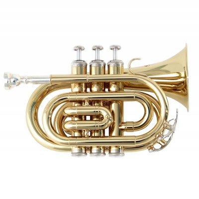 SOUNDSATION TROMBA STPGD-10P POCKET GOLD
